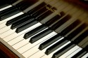 Wurlitzer Butterfly grand style piano
