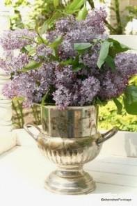 c32f707915f874030465f23de8d455b9--champagne-buckets-lilac-flowers (1)