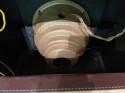 Zenith 9S365 Antique Shutter Dial Stars Bars Tube Radio Art Deco Bluetooth
