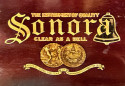 Sonora Windup Antique 1915 Phonograph Record Player