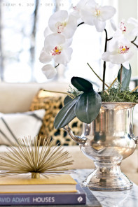 orchid-champagne-bucket-1
